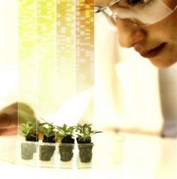 Nacimiento productos de Pons Patentes