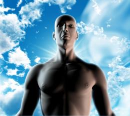 Cuerpo humano, de Free Download