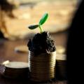 Capital riesgo, de Pixabay