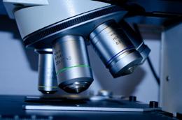 Investigación, desarrollo e innovación, de Pixabay