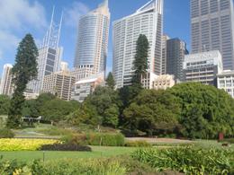Sydney, de Pixabay
