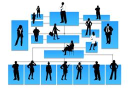 Gestión de profesionales, de Pixabay
