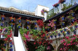 Patios de Córdoba, de Open