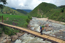 Arrozales de Vietnam, de Open