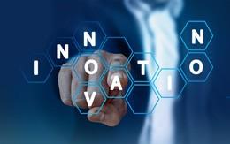 Director de Innovación, de Pixabay