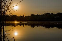 Noche en el Delta del Danuibio, de Open