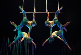 El Circo del Sol en crucero, de Aquotic.com