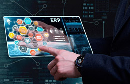Gestión con ERP, de Datisa