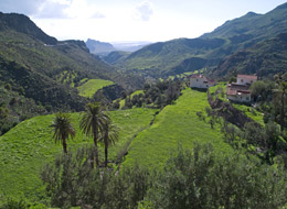 Valle en GrtanCanaria,d e Turismo de Gran Canaria