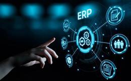 ERP y rentabilidad de clientes, de Datisa