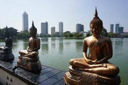 Estatuas en Colombo, de Open