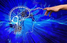 Neuromarketing ante el nuevo consumidor, de Pixabay